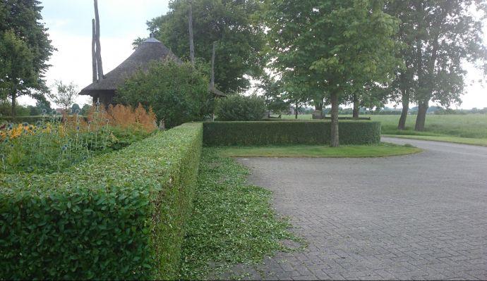 Hovenier Amersfoort